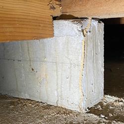 天井や壁、床の損傷